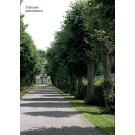 """""""Zuhause ankommen"""" - Wald & Schlosshotel Friedrichsruhe"""